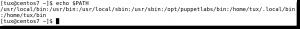 bash scripts